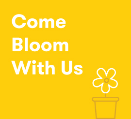 Careers @ Bloom